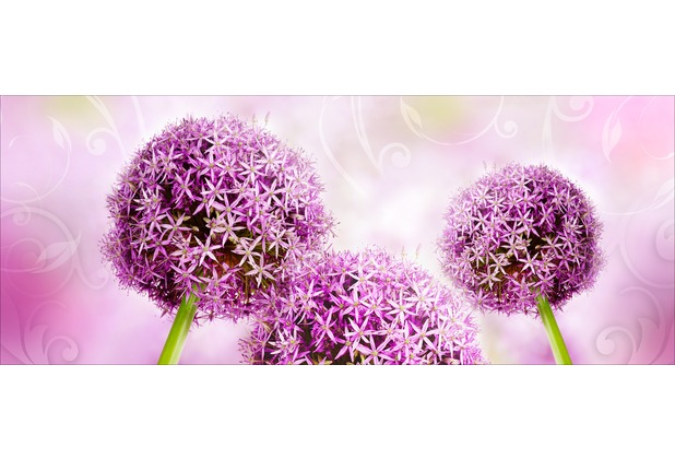 Glas-Art Floatglas Bild Purple pinball 80 x 30 cm