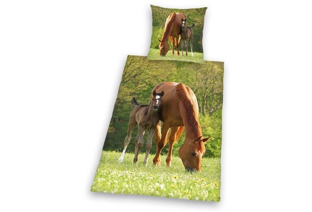 Herding Young collection Pferd Bettwäsche 135x200cm + 80x80cm grün