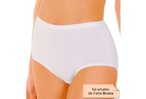 Janira Pack-3 Maxi Esencial Panties bruma L
