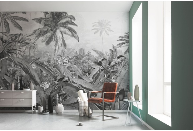 "Komar Digitaldruck Fototapete auf Vlies \""Amazonia Black and White\"" 400 x 250 cm"