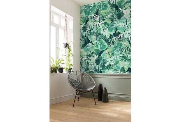 "Komar Digitaldruck Fototapete auf Vlies \""Evergreen\"" 200 x 250 cm"