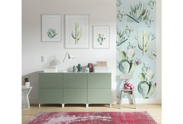 "Komar Digitaldruck Fototapete auf Vlies\""Cactus Blue Panel\"" 100 x 250 cm"