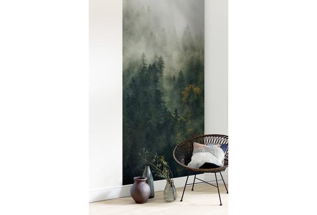 "Komar Digitaldruck Fototapete auf Vlies\""Tales of the Carpathians Panel\""\"" 100 x 250 cm"
