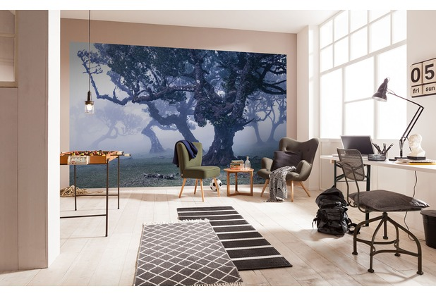 "Komar Digitaldruck Vliestapete \""Ghost Line\"" 400 x 250 cm"