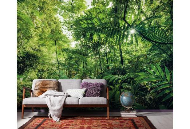 "Komar Digitaldruck Vliestapete \""Into The Jungle\"" 400 x 250 cm"
