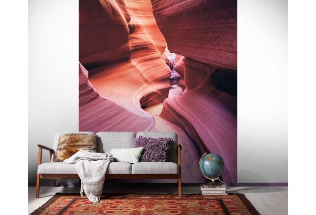 "Komar Digitaldruck Vliestapete \""Lost in Color\"" 200 x 250 cm"