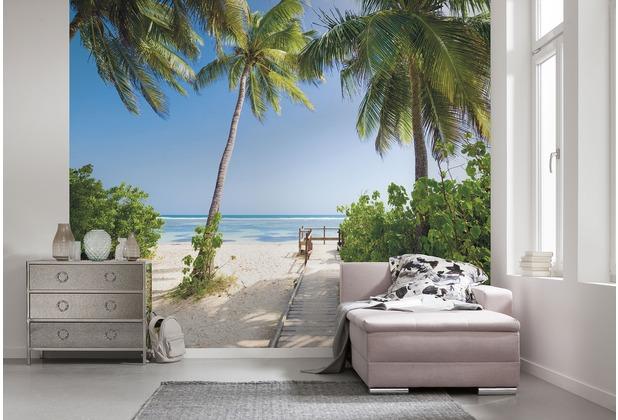 "Komar Digitaldruck Vliestapete \""Palmy Beach\"" 300 x 250 cm"