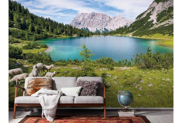 "Komar Digitaldruck Vliestapete \""Paradise Lake\"" 400 x 250 cm"