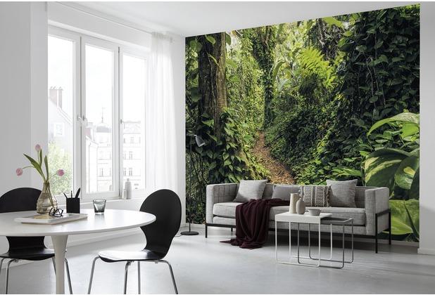 "Komar Digitaldruck Vliestapete \""Path of Dreams\"" 400 x 250 cm"