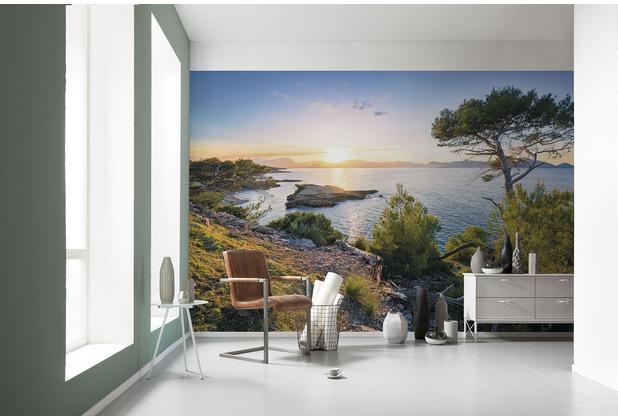 "Komar Digitaldruck Vliestapete \""Southern Light\"" 400 x 250 cm"
