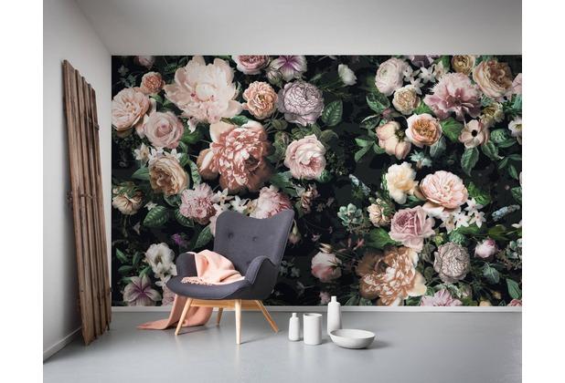 "Komar Digitaldruck Vliestapete \""Victoria Black\"" 400 x 250 cm"