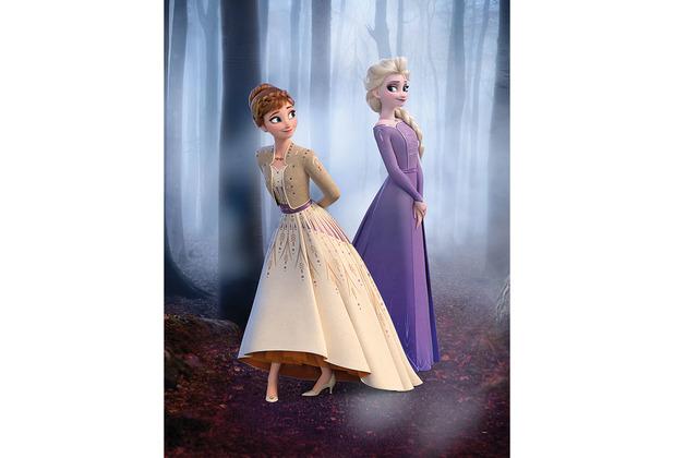 Komar Disney Wandbild Frozen Wood Walk 30 x 40 cm
