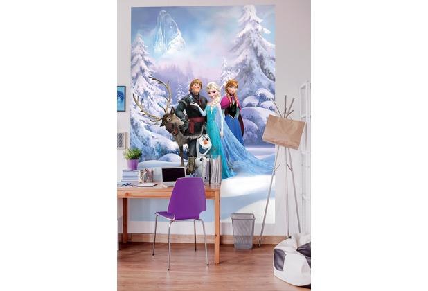 """Komar Fototapete \""""Frozen Winter Land\"""" 184 x 254 cm"""