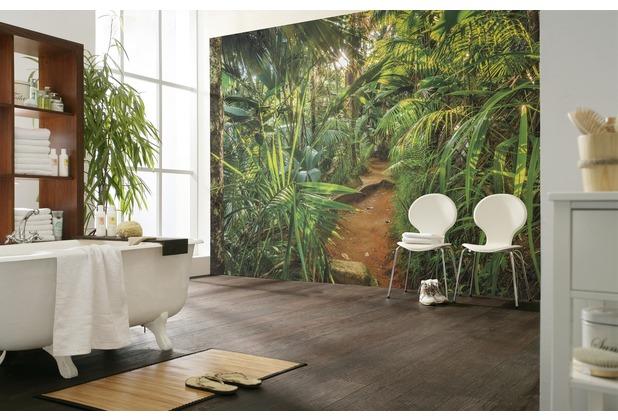 """Komar Fototapete \""""Jungle Trail\"""" 368 x 254 cm"""