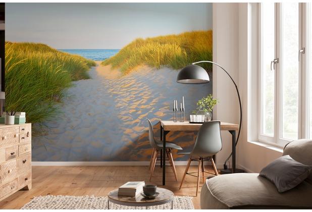 """Komar Fototapete \""""Sandy Path\"""" 368 x 254 cm"""