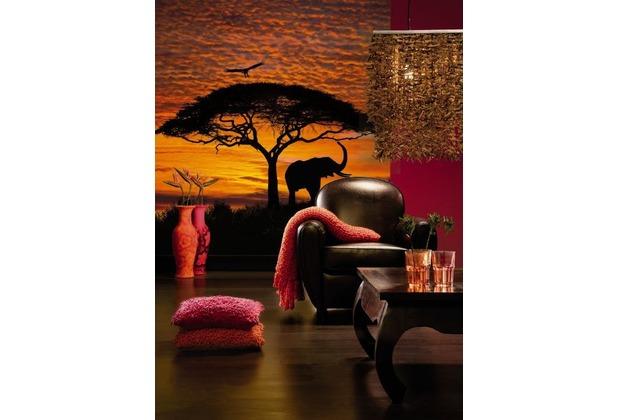 Komar Fototapete African Sunset 194 x 270 cm
