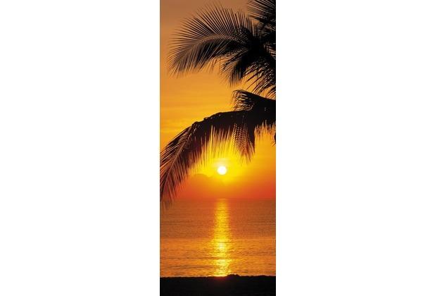 Komar Fototapete Palmy Beach Sunrise 92 x 220 cm