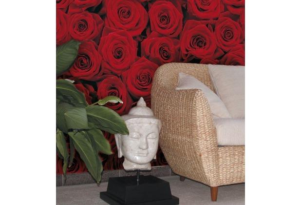 Komar Fototapete Roses 194 x 270 cm