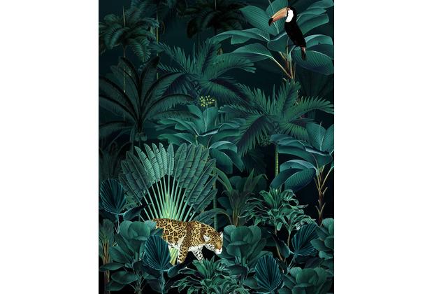 "Komar home Vlies Fototapete \""Jungle Night\"" 200 x 250 cm"