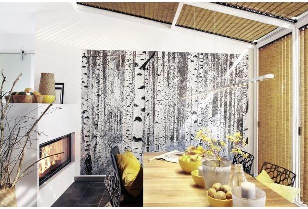Komar Vlies Fototapete munich design book - Woods 400 x 270 cm