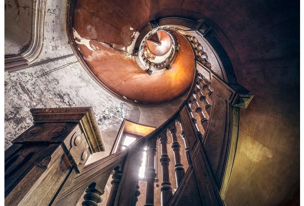 """Komar Stefan Hefele / Lost Places Vlies Fototapete \""""Oak Spiral\"""" 400 x 280 cm"""