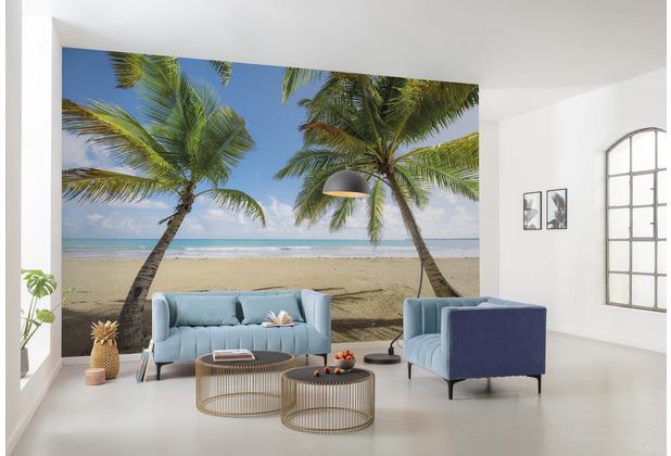 "Komar Vlies Fototapete \""Caribbean Days II\"" 450 x 280 cm"
