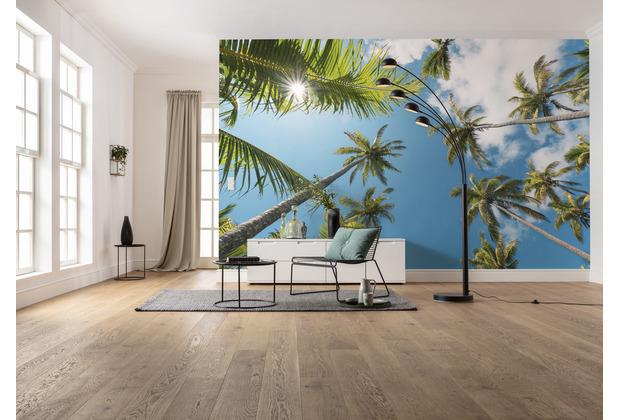 """Komar Vlies Fototapete \""""Coconut Heaven II\"""" 450 x 280 cm"""