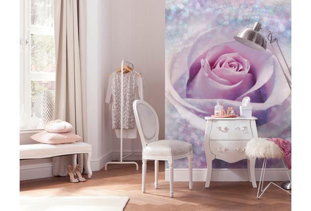 Komar Vlies Fototapete Delicate Rose