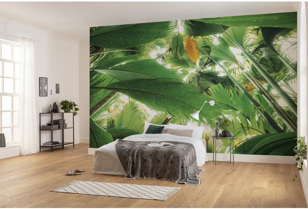 "Komar Vlies Fototapete \""Dschungeldach II\"" 450 x 280 cm"