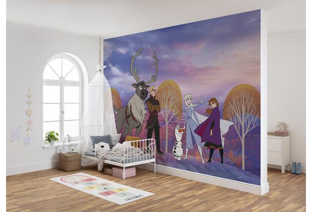 "Komar Vlies Fototapete \""Frozen Autumn Forest\"" 400 x 280 cm"