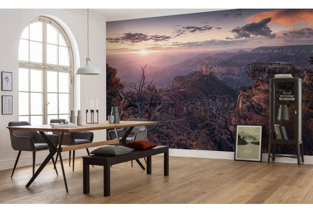 "Komar Vlies Fototapete \""Grand View\"" 450 x 280 cm"