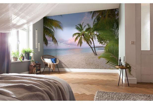 Komar Vlies Fototapete Paradise Morning 248 x 368 cm