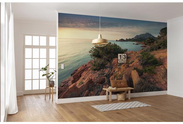 "Komar Vlies Fototapete \""Paradiso II\"" 450 x 280 cm"