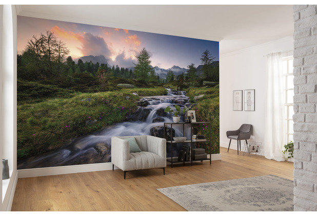 "Komar Vlies Fototapete \""Wild Paradise\"" 450 x 280 cm"