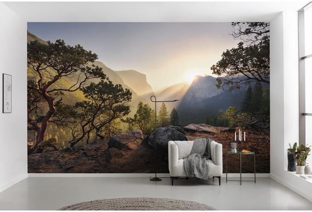 """Komar Vlies Fototapete \""""Yosemites Secret\"""" 450 x 280 cm"""