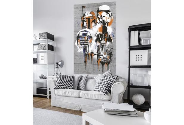 "Komar Vlies Panel \""Star Wars Celebrate The Galaxy\"" 120 x 200 cm"