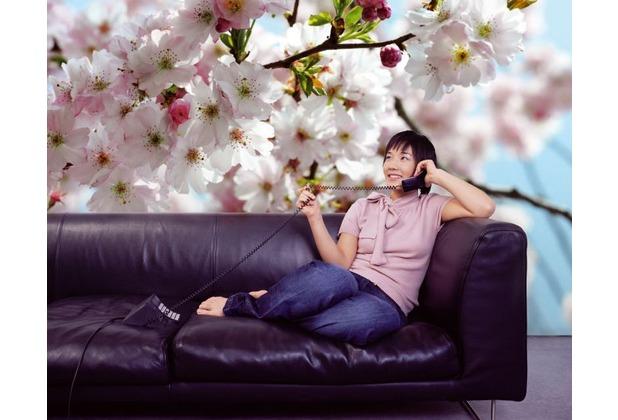 Komar Vlies Fototapete Spring 368 x 254 cm