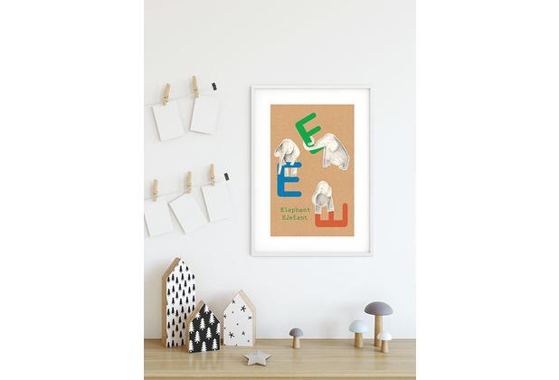 Komar Wandbild ABC Animal E 30 x 40 cm