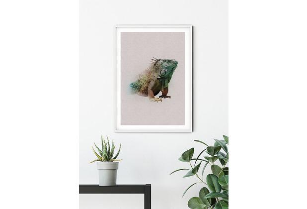 Komar Wandbild Animals Paradise Iguana 30 x 40 cm