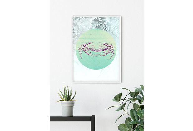 Komar Wandbild Crab Sea 30 x 40 cm