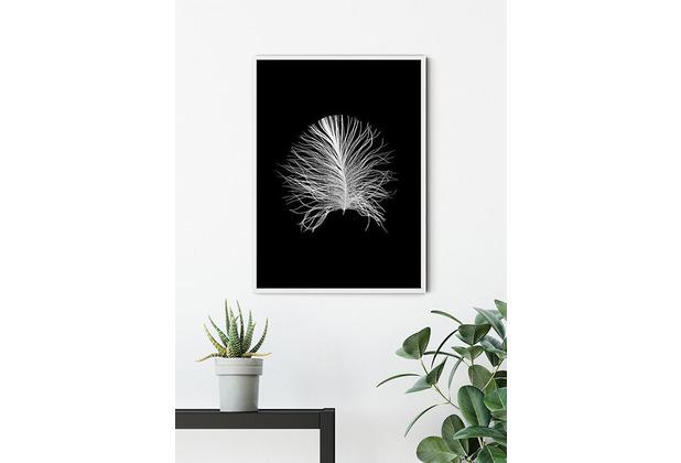 Komar Wandbild Feather Black 30 x 40 cm