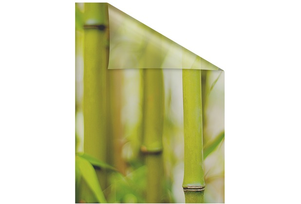 Lichtblick Fensterfolie selbstklebend, Sichtschutz, Bambus - Grün Breite: 100 cm, Länge: 100 cm