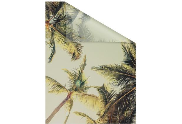 Lichtblick Fensterfolie selbstklebend, Sichtschutz, Palmen und Sonne - Grün Breite: 100 cm, Länge: 100 cm
