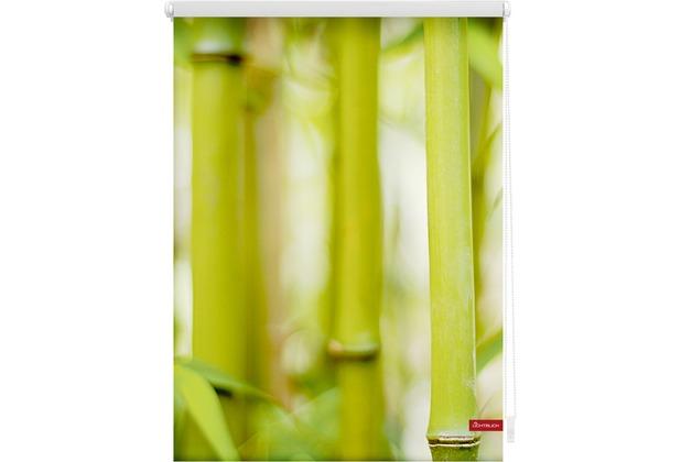 Lichtblick Rollo Klemmfix, ohne Bohren, blickdicht, Bambus - Grün Breite: 100 cm