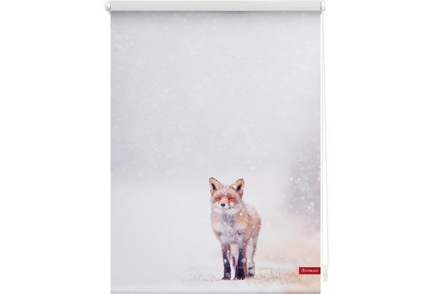 Lichtblick Rollo Klemmfix, ohne Bohren, blickdicht, Fuchs im Schnee - Weiß Rot Breite: 100 cm