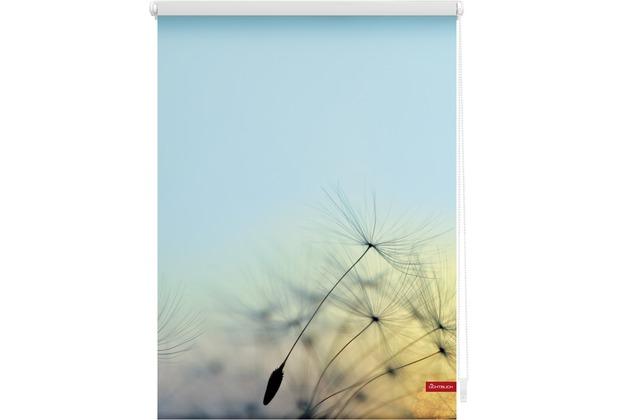 Lichtblick Rollo Klemmfix, ohne Bohren, blickdicht, Pusteblume - Blau Breite: 100 cm