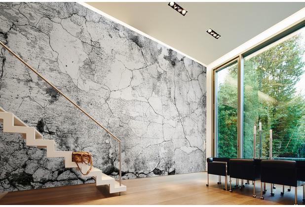 Livingwalls Fototapete Designwalls Betontapete Cement Crack grau schwarz weiß Vliestapete glatt 3,50 m x 2,55 m