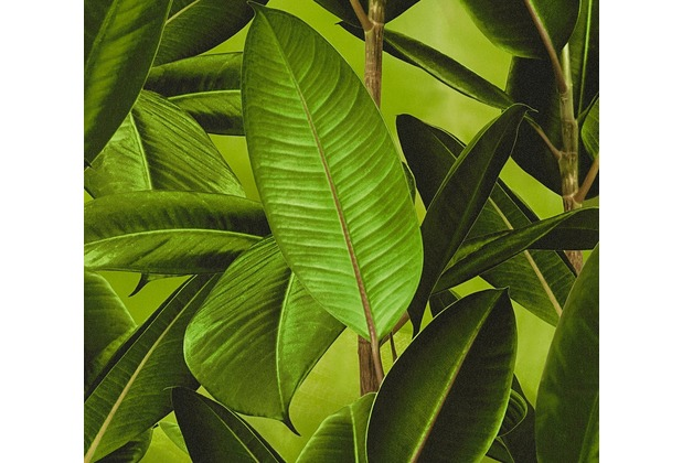 Livingwalls Vliestapete Neue Bude 2.0 Tapete Dschungel Optik Bananenblätter grün braun 362011 10,05 m x 0,53 m