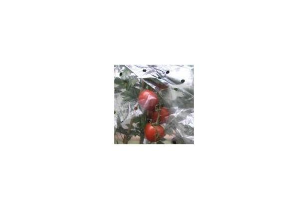 NOOR Tomatenhaube 0,65x10m gelocht 20my für 10 Tomaten