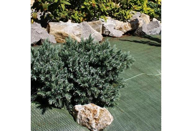 NOOR Unkrautblocker grün Bodengewebe 105gr/m² 0,9x10m